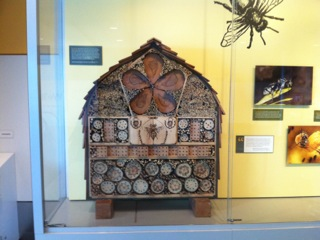 Bee hotel by Geoff Bidwell.jpeg